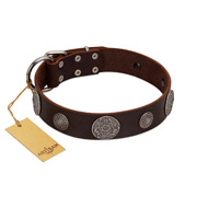 """Flashy Woof"" FDT Artisan Brown Leather Cane Corso Collar with Chrome Plated Brooches"