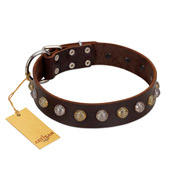 """Gape Buster"" FDT Artisan Brown Leather Cane Corso Collar with One Row of Studs"