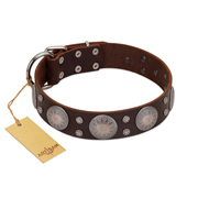 """Imperial Legate"" FDT Artisan Brown Leather Cane Corso Collar with Big Round Plates"
