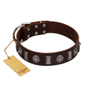 """Spiky Way"" FDT Artisan Brown Leather Cane Corso Collar with Silver-Like Decorations"