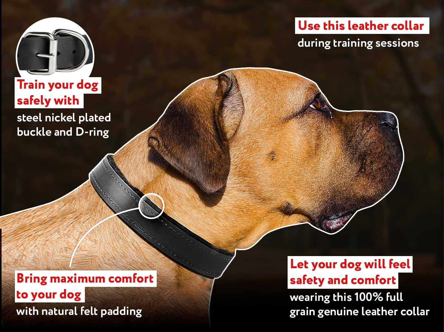 """Fur Protector"" Black Stainless Steel Cane Corso Choke Collar - 1/6 inch (4 mm) wire diameter"