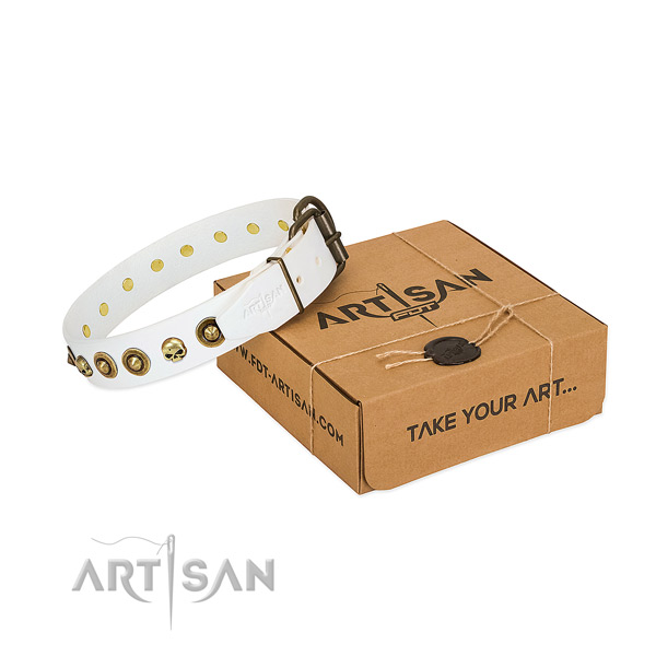 Full grain natural leather collar with unusual embellishments for your doggie