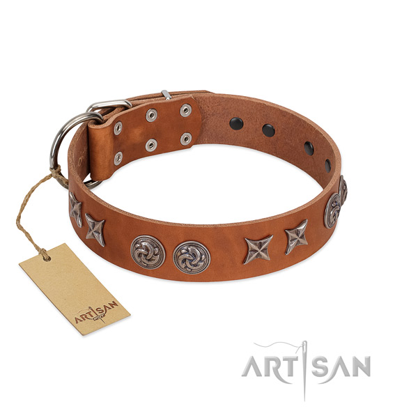 Comfortable wearing dog collar of leather with impressive decorations