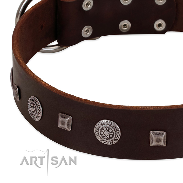 Soft to touch leather dog collar with unique adornments