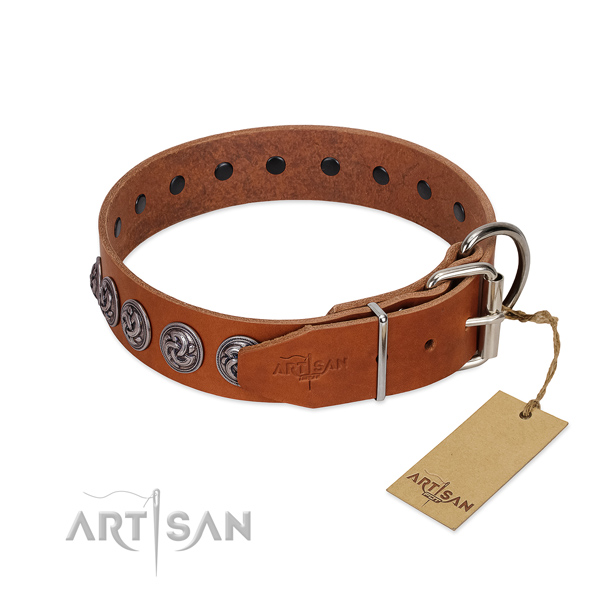 Rust-proof buckle on incredible genuine leather dog collar