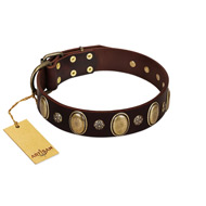 """Bronze Idol"" FDT Artisan Brown Leather Cane Corso Collar with Eye-catching Ovals and Small Studs"