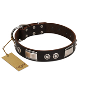 """Baller Status"" FDT Artisan Brown Leather Cane Corso Collar Adorned with a Set of Chrome Plated Studs and Plates"