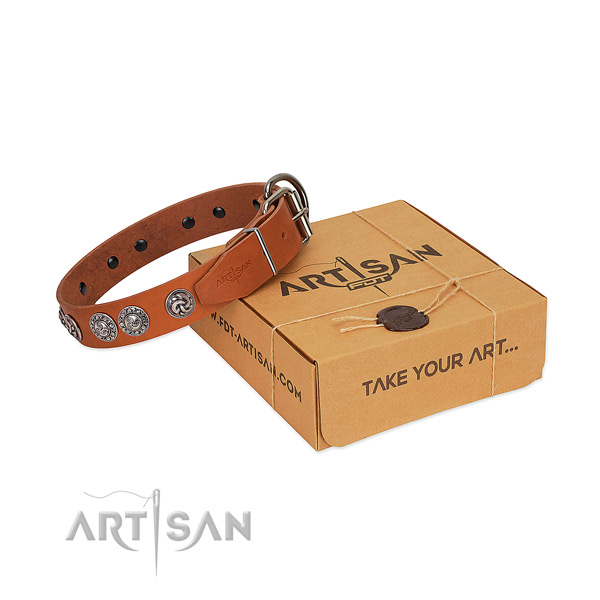 Significant full grain genuine leather collar for your canine stylish walking