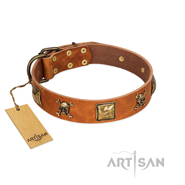 Remarkable full grain natural leather dog collar with rust resistant embellishments