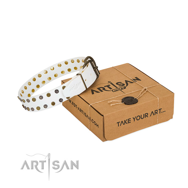 Fashionable full grain genuine leather dog collar with durable studs