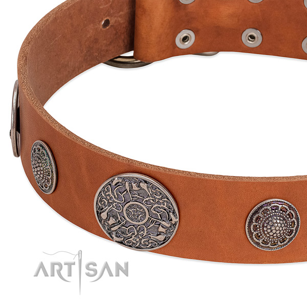 Corrosion resistant fittings on natural genuine leather dog collar