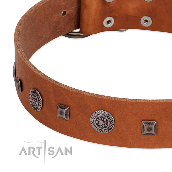 Fine quality full grain genuine leather collar with studs for your four-legged friend