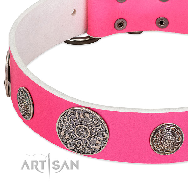 Durable buckle on leather dog collar