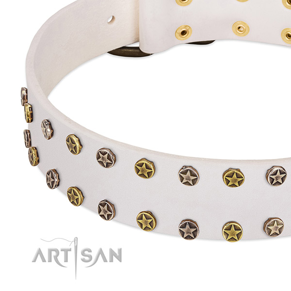 Incredible studs on natural leather collar for your dog