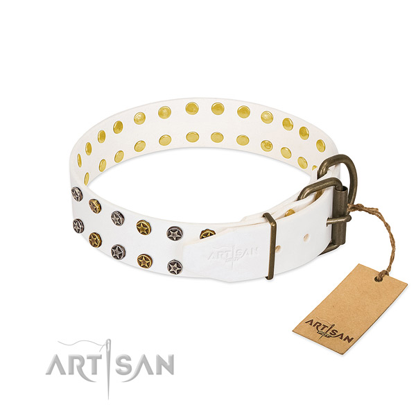 Full grain leather collar with impressive studs for your dog