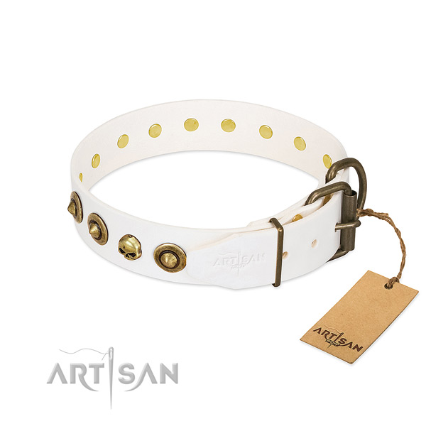 Natural leather collar with remarkable embellishments for your canine