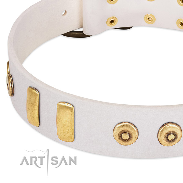Top notch full grain natural leather collar with amazing studs for your dog
