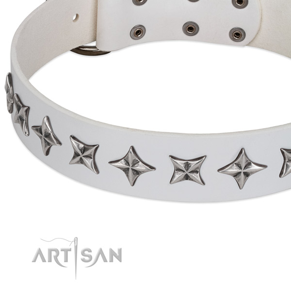 Comfy wearing studded dog collar of strong natural leather