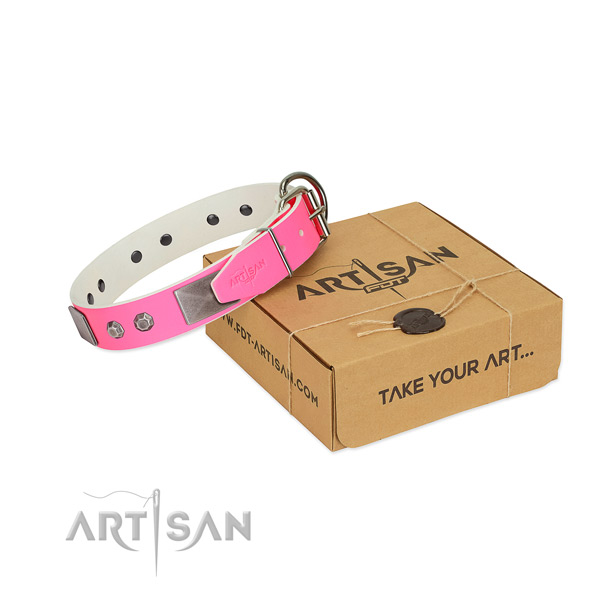 Basic training dog collar of genuine leather with extraordinary adornments
