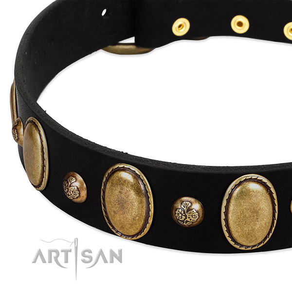Full grain natural leather dog collar with inimitable studs
