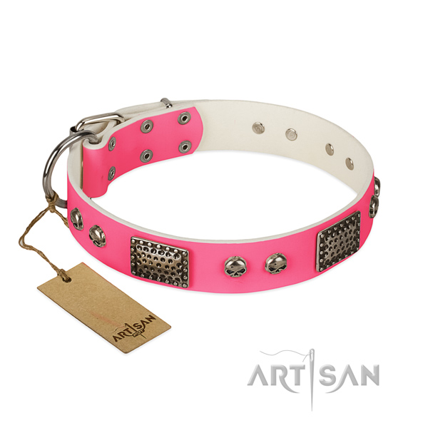 Easy adjustable leather dog collar for daily walking your dog