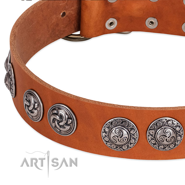 Stylish full grain genuine leather dog collar for comfortable wearing