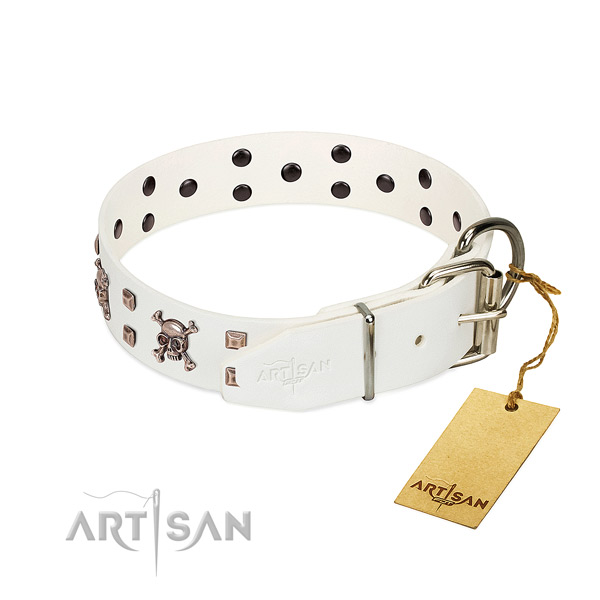 Comfy wearing top rate leather dog collar with decorations