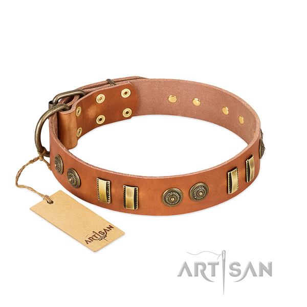 Rust-proof hardware on full grain genuine leather dog collar for your canine