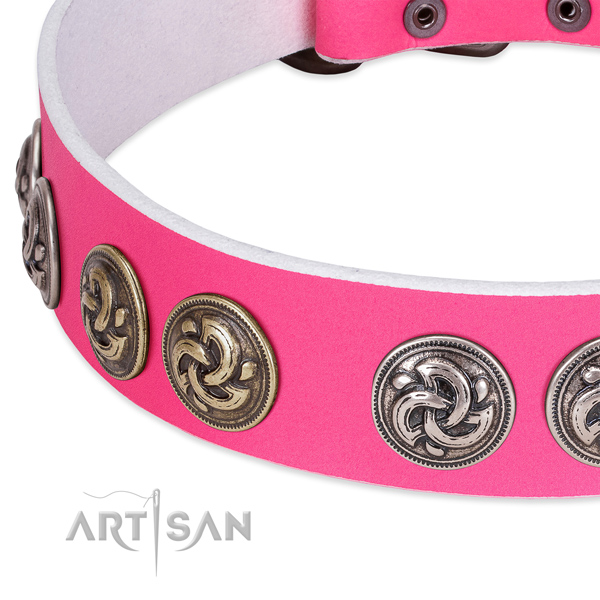 Extraordinary full grain genuine leather collar for your pet walking