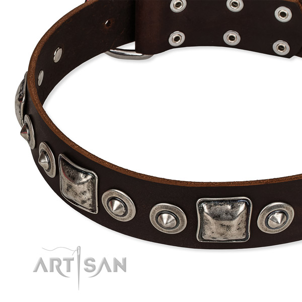 Quality full grain leather dog collar made for your stylish dog