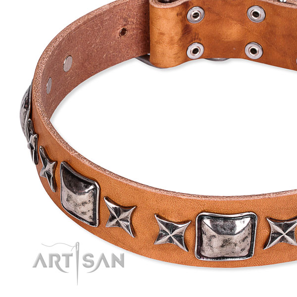 Comfortable wearing embellished dog collar of top quality full grain leather