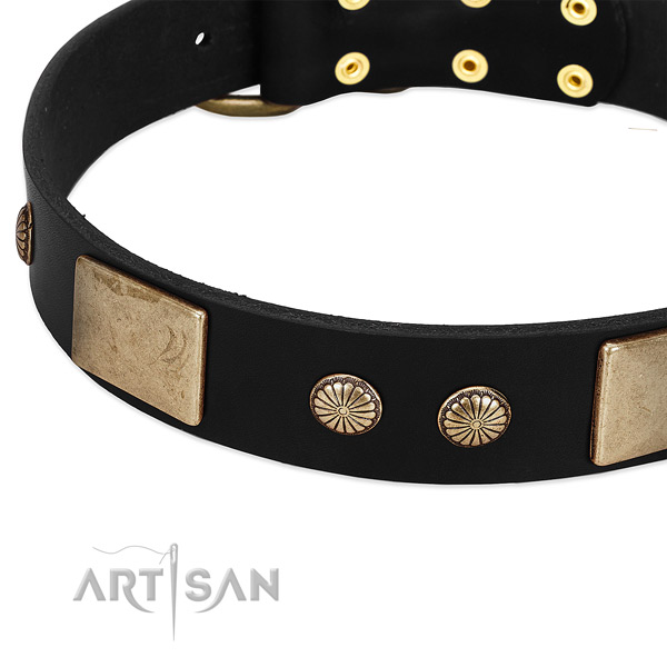 Full grain natural leather dog collar with embellishments for comfy wearing