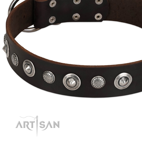 Exquisite decorated dog collar of durable full grain natural leather