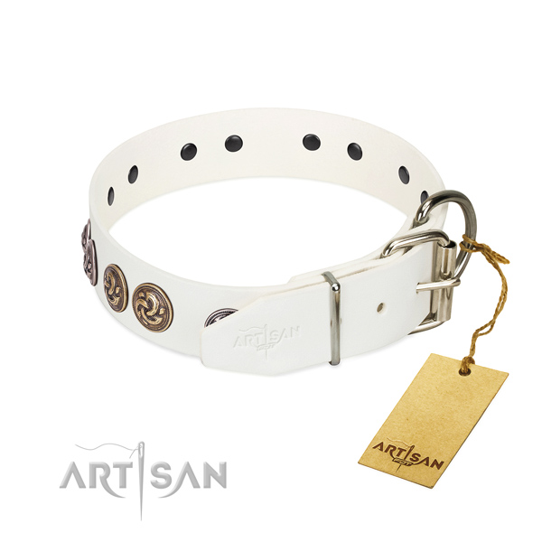 Strong fittings on stunning genuine leather dog collar
