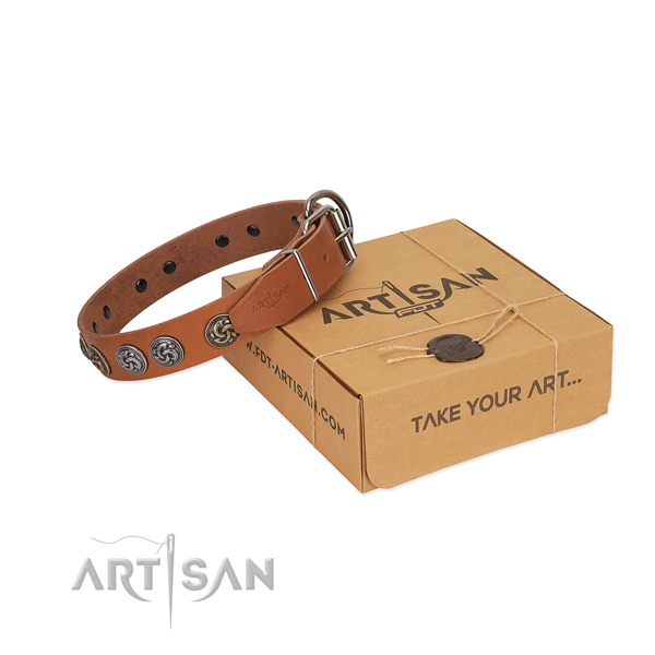 Full grain natural leather collar with remarkable embellishments for your four-legged friend