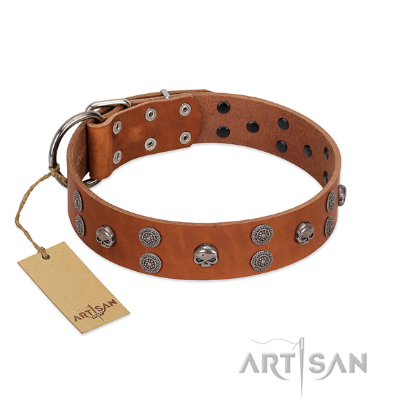 Top rate leather dog collar with embellishments for comfy wearing