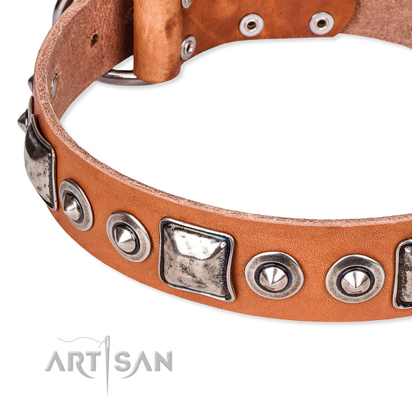 Quality full grain leather dog collar handcrafted for your handsome four-legged friend