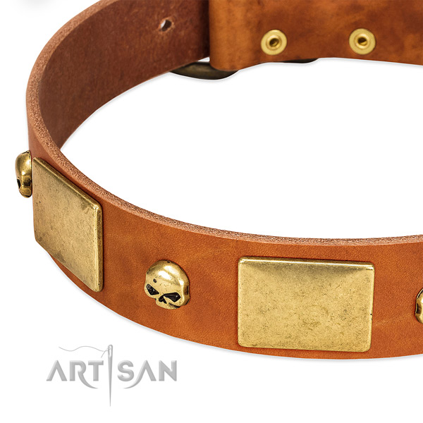 High quality full grain leather dog collar with rust resistant D-ring