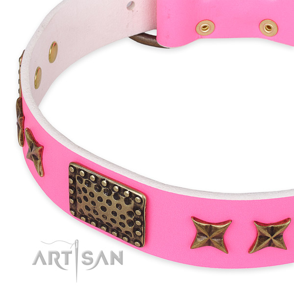 Leather collar with rust resistant traditional buckle for your beautiful four-legged friend