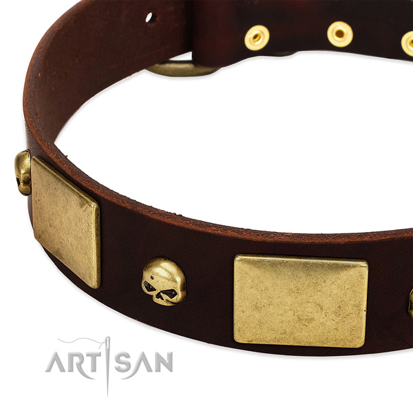 Reliable full grain natural leather collar with rust resistant decorations for your pet