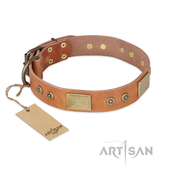 Decorated full grain genuine leather dog collar for everyday walking