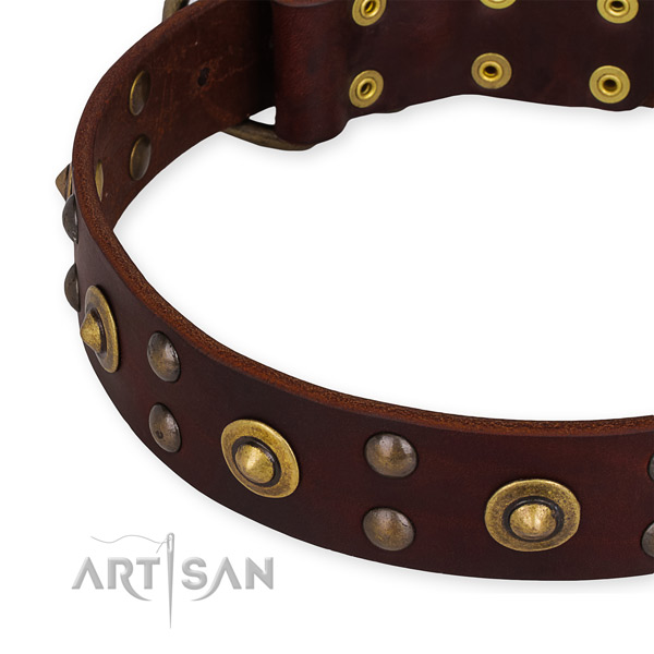Full grain natural leather collar with durable hardware for your lovely canine