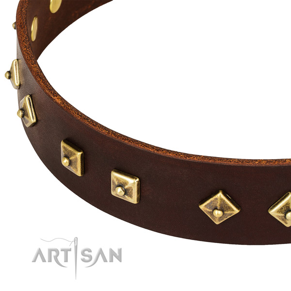 Awesome leather collar for your impressive doggie