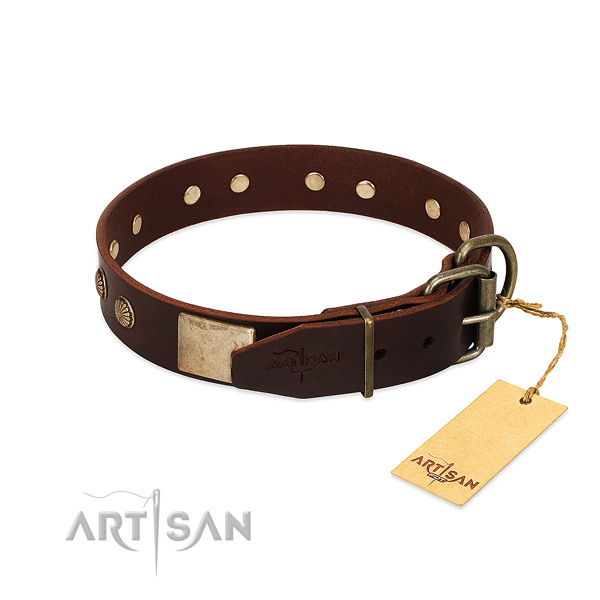 Strong traditional buckle on everyday walking dog collar