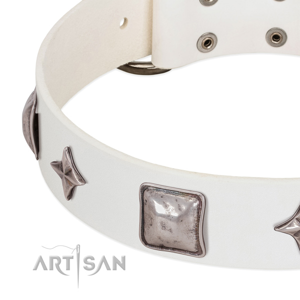Leather collar with inimitable decorations for your doggie