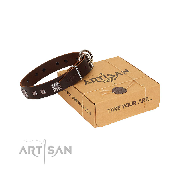 Incredible leather collar with adornments for your doggie