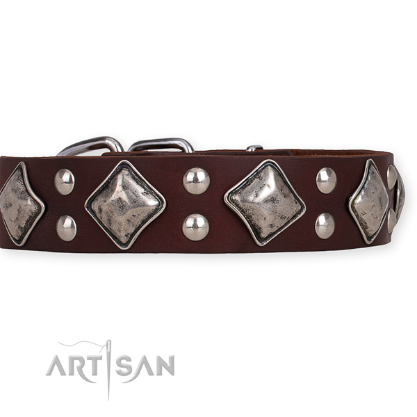 Genuine leather dog collar with significant strong decorations