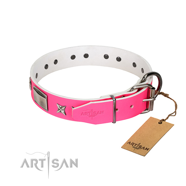 Best quality dog collar of leather