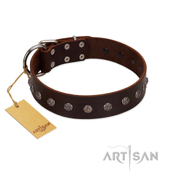 Comfy wearing full grain leather dog collar with designer decorations