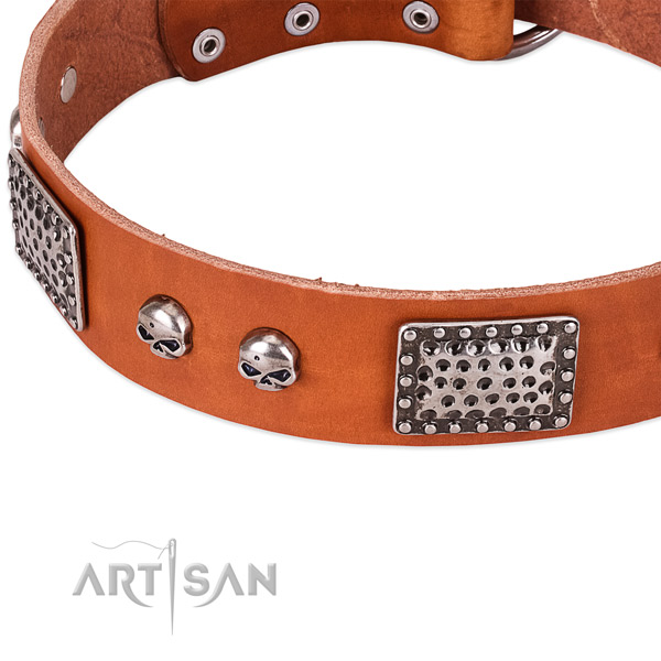 Rust resistant buckle on genuine leather dog collar for your canine